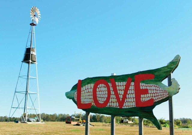 NN-Farm-LOVE.jpg