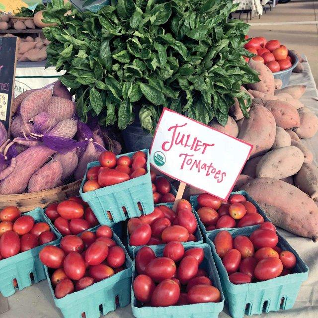FM-4-KFM-Juliet-tomatoes.jpg-Kilmarnock.jpg