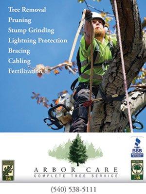 ArborCare54.jpg