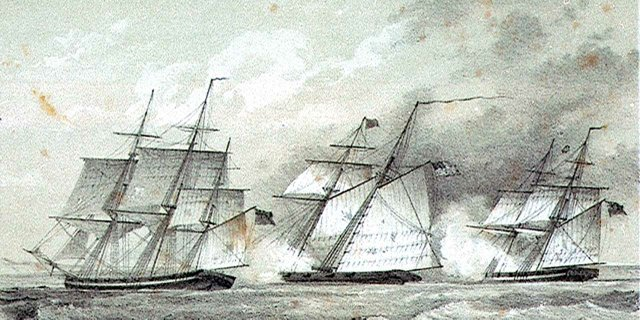 Dolphin-and-ships-(1)=2.jpg