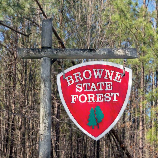 008-Browne-State-Forest-Sign.jpg