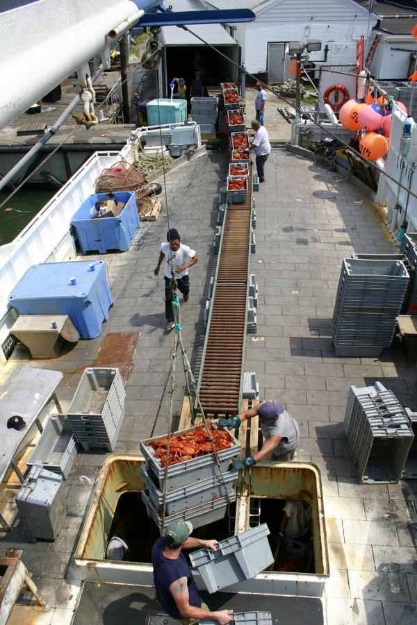 IMG_0537-(1)Virginia-Institute-of-Marine-Science.jpg
