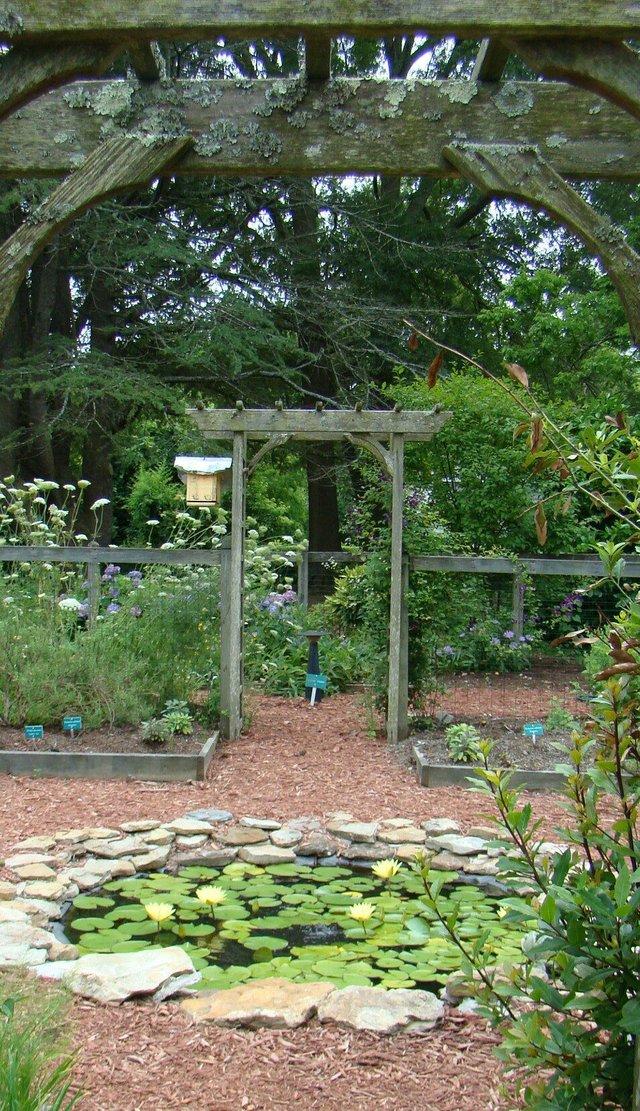 NM Mattey's Garden 2_preview.jpeg
